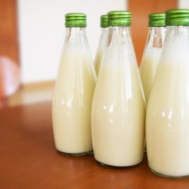 How Do Foods Without Nipples Make Milk?