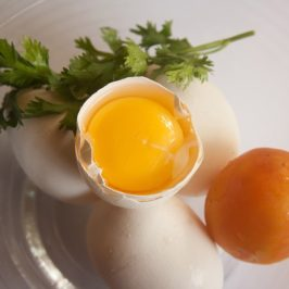 Your Brain as an Egg Yolk, Don't Scramble It!