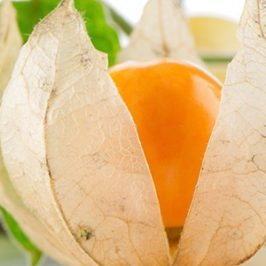 Adaptogenic Herbs or Pixie Dusted Foods