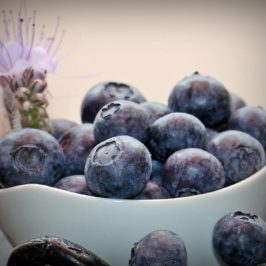 The Best Benefits of Blueberries